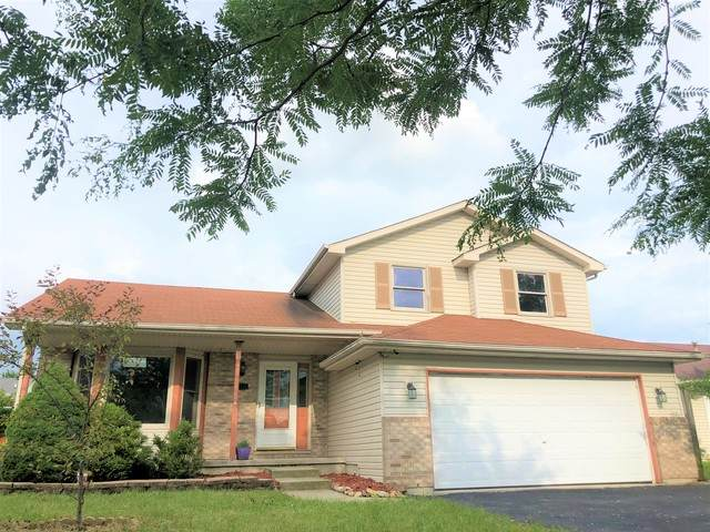 2110 Lolo Pass Drive, Joliet, IL 60431 (MLS #10769899) :: Property Consultants Realty