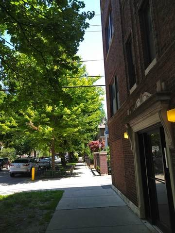 1255 W Henderson Street #1, Chicago, IL 60657 (MLS #10769943) :: Property Consultants Realty