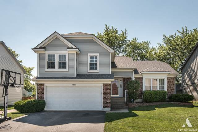 1123 Wilkes Lane, Lake Zurich, IL 60047 (MLS #10770113) :: Property Consultants Realty