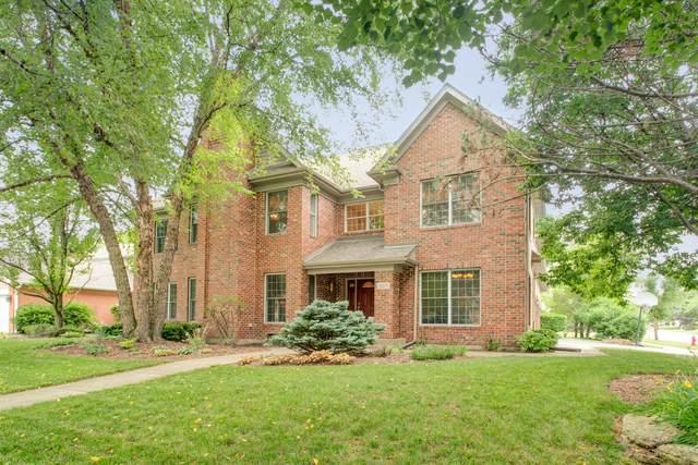 307 N Westminster Drive, Palatine, IL 60067 (MLS #10770491) :: Helen Oliveri Real Estate