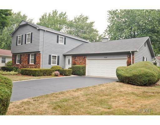 730 Shady Grove Lane, Buffalo Grove, IL 60089 (MLS #10770689) :: Property Consultants Realty
