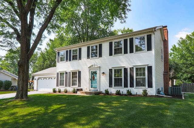1039 Knoll Drive, Naperville, IL 60565 (MLS #10770793) :: The Wexler Group at Keller Williams Preferred Realty