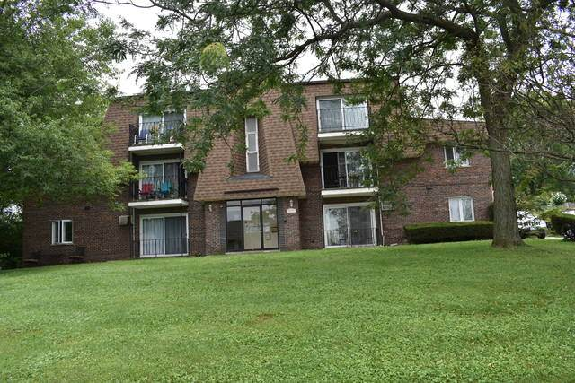 8231 S Archer Avenue #7, Willow Springs, IL 60480 (MLS #10771121) :: Knott's Real Estate Team