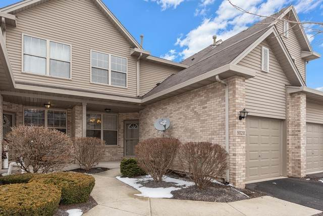 9028 Mansfield Drive, Tinley Park, IL 60487 (MLS #10771133) :: Littlefield Group
