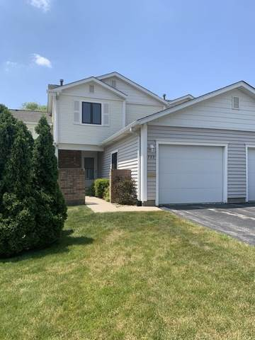 733 Shoreline Circle, Schaumburg, IL 60194 (MLS #10771967) :: Knott's Real Estate Team
