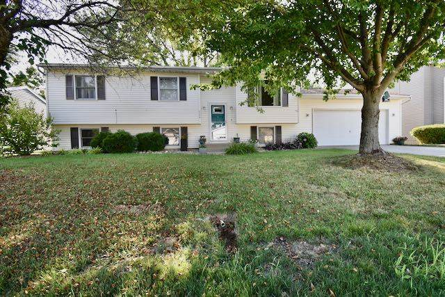 608 Tomahawk Court, HEYWORTH, IL 61745 (MLS #10772143) :: Ryan Dallas Real Estate