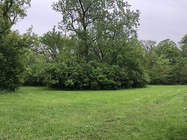 1000 Cambridge Avenue, Flossmoor, IL 60422 (MLS #10772246) :: Property Consultants Realty