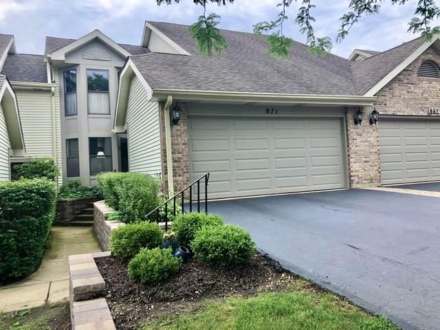 871 N Auburn Woods Drive, Palatine, IL 60067 (MLS #10772253) :: Helen Oliveri Real Estate