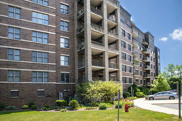 125 Lakeview Drive #309, Bloomingdale, IL 60108 (MLS #10772544) :: Property Consultants Realty