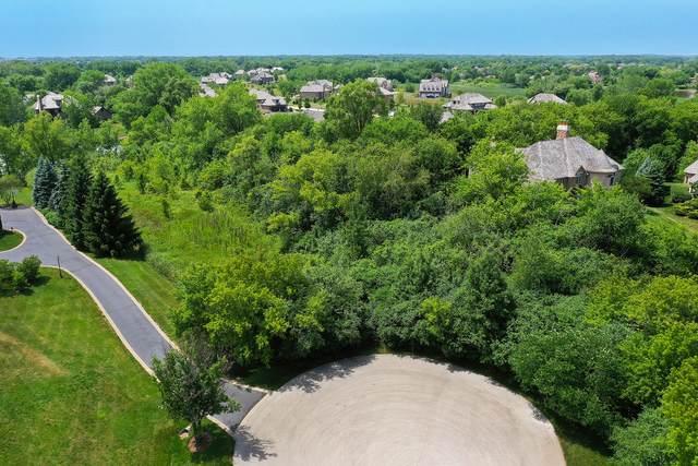4570 Pamela Court, Long Grove, IL 60047 (MLS #10772784) :: Lewke Partners