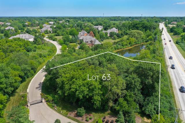 4595 Patricia Drive, Long Grove, IL 60047 (MLS #10772857) :: Littlefield Group