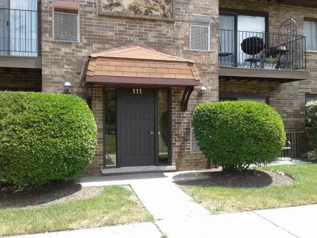 111 W Brandon Court E14, Palatine, IL 60067 (MLS #10772951) :: Helen Oliveri Real Estate