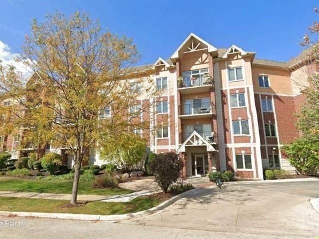 8120 W Park Avenue #306, Niles, IL 60714 (MLS #10772992) :: Helen Oliveri Real Estate