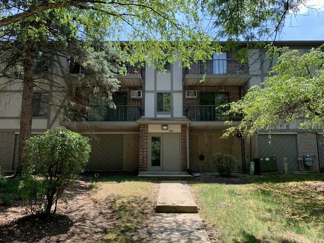 528 E Bailey Road #102, Naperville, IL 60565 (MLS #10773119) :: Angela Walker Homes Real Estate Group