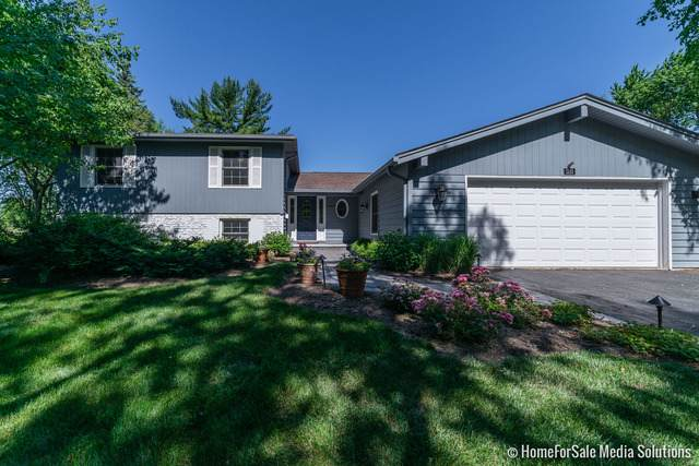 1313 N West Street, Naperville, IL 60563 (MLS #10773282) :: Ani Real Estate