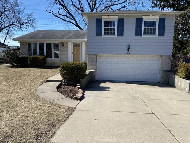 1414 N Indigo Drive, Mount Prospect, IL 60056 (MLS #10773309) :: BN Homes Group