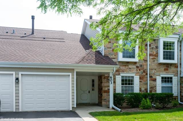 603 Fairbanks Court W1, Schaumburg, IL 60194 (MLS #10773322) :: Knott's Real Estate Team