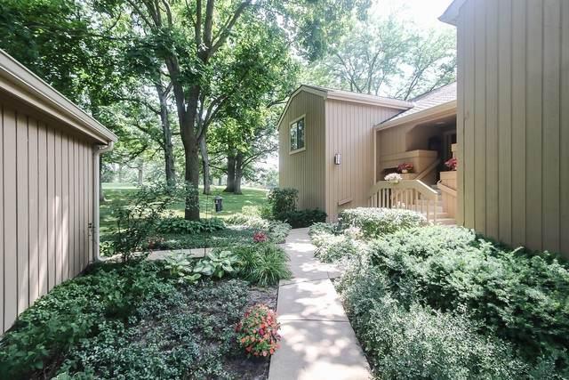 208-B Hickory Lane W C450sfc, Lake Barrington, IL 60010 (MLS #10773808) :: Angela Walker Homes Real Estate Group