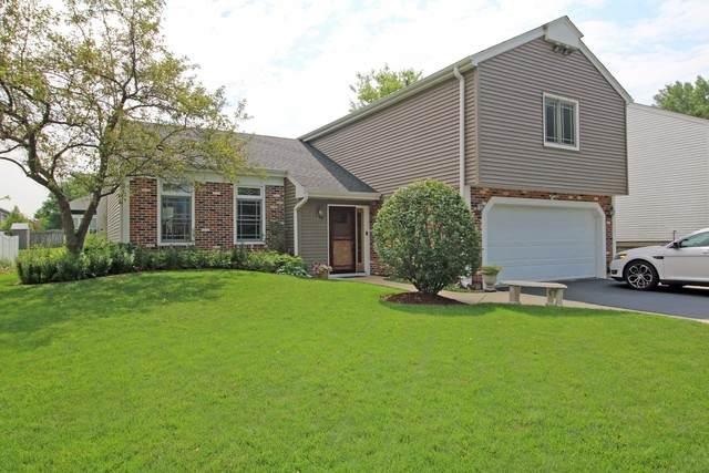 973 Stuart Drive, Bartlett, IL 60103 (MLS #10773938) :: The Wexler Group at Keller Williams Preferred Realty