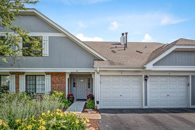 861 Yosemite Trail D, Roselle, IL 60172 (MLS #10774205) :: Knott's Real Estate Team