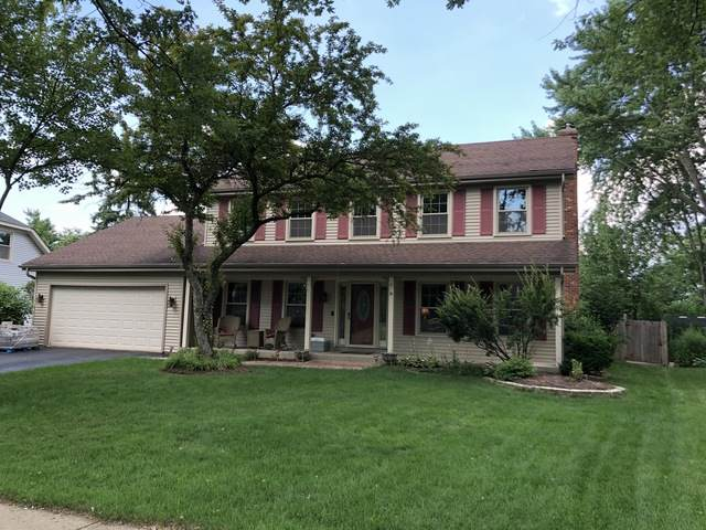 25W056 Setauket Avenue, Naperville, IL 60540 (MLS #10774663) :: Helen Oliveri Real Estate