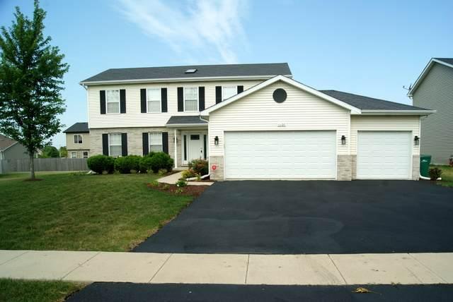 1107 Weinberger Circle, Joliet, IL 60431 (MLS #10775253) :: Angela Walker Homes Real Estate Group