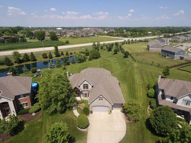 1996 Edgeview Drive, New Lenox, IL 60451 (MLS #10775443) :: The Wexler Group at Keller Williams Preferred Realty