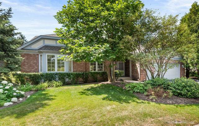 6 Tamarisk Court, Lake In The Hills, IL 60156 (MLS #10775473) :: Property Consultants Realty