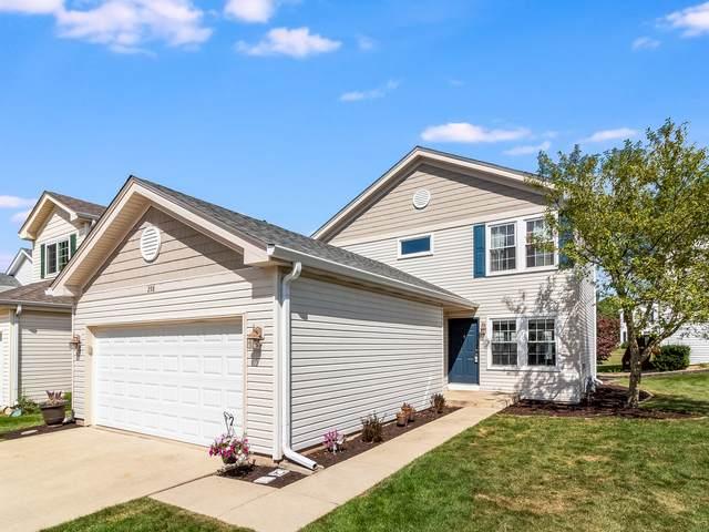 298 Waterbury Circle, Oswego, IL 60543 (MLS #10775736) :: Angela Walker Homes Real Estate Group