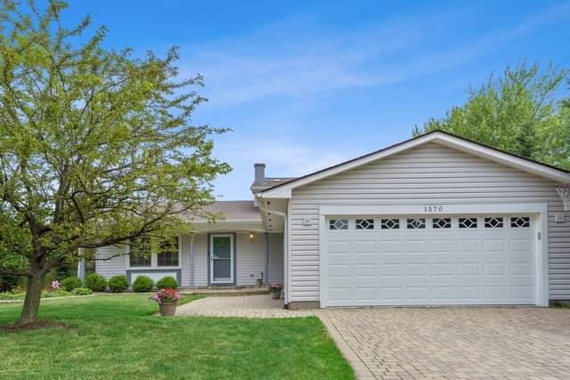 1570 Chesapeake Drive, Hoffman Estates, IL 60192 (MLS #10776118) :: Angela Walker Homes Real Estate Group