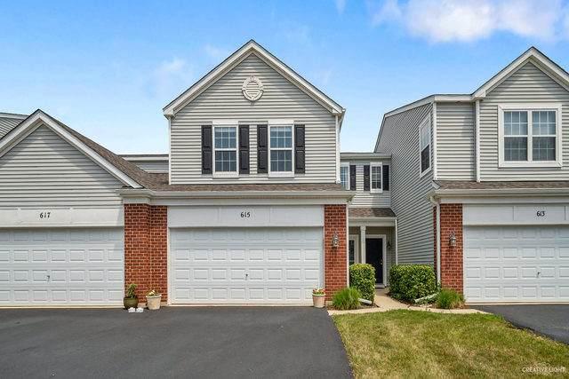 615 Springbrook Trail N #615, Oswego, IL 60543 (MLS #10776295) :: Ryan Dallas Real Estate