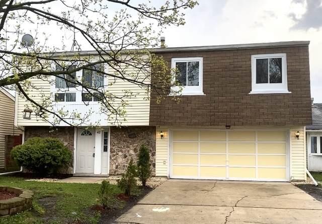 42 Village Court, Elgin, IL 60120 (MLS #10776320) :: Helen Oliveri Real Estate