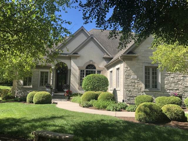 407 Reserve Court, Joliet, IL 60431 (MLS #10776325) :: Helen Oliveri Real Estate