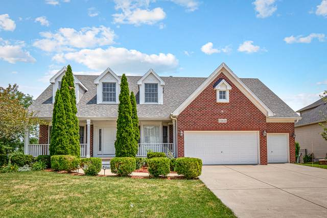 25656 Meadowland Circle, Plainfield, IL 60585 (MLS #10777055) :: Ryan Dallas Real Estate