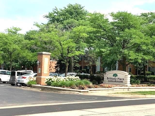 2303 S Goebbert Road #110, Arlington Heights, IL 60005 (MLS #10777239) :: The Dena Furlow Team - Keller Williams Realty