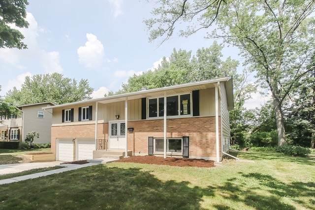 254 N Morris Drive, Palatine, IL 60074 (MLS #10777244) :: Suburban Life Realty