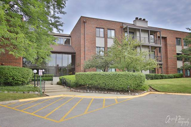 3070 Pheasant Creek Drive #302, Northbrook, IL 60062 (MLS #10777261) :: Helen Oliveri Real Estate