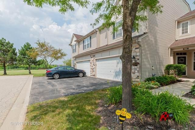 764 Dillon Court, Grayslake, IL 60030 (MLS #10777307) :: Lewke Partners