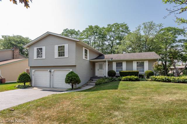 1227 62nd Street, Downers Grove, IL 60516 (MLS #10777530) :: Property Consultants Realty