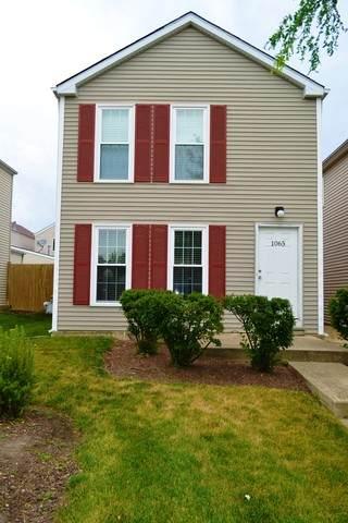1065 Serendipity Drive, Aurora, IL 60504 (MLS #10777997) :: Ryan Dallas Real Estate