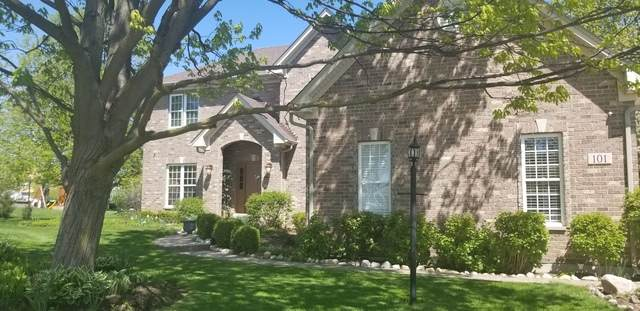 101 Meadows Court, Oswego, IL 60543 (MLS #10778162) :: O'Neil Property Group