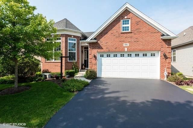 3881 Kingsmill Drive, Elgin, IL 60124 (MLS #10778206) :: Suburban Life Realty