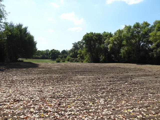 230 Oakdene Drive, Barrington Hills, IL 60010 (MLS #10778347) :: Helen Oliveri Real Estate