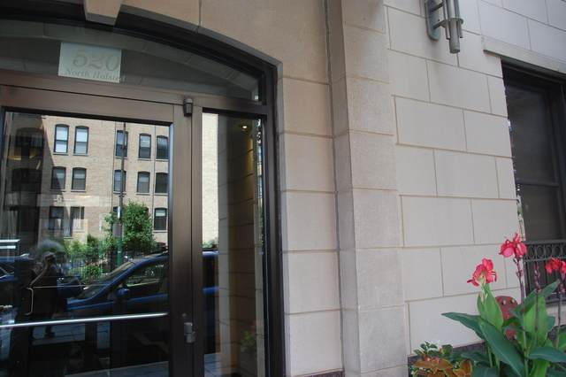 520 N Halsted Street #500, Chicago, IL 60624 (MLS #10778574) :: The Mattz Mega Group