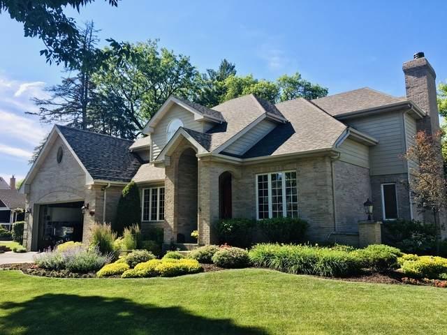 738 E Prairie Avenue, Des Plaines, IL 60016 (MLS #10778634) :: Property Consultants Realty