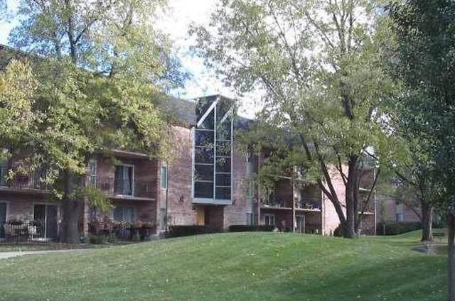 1041 N Mill Street #102, Naperville, IL 60563 (MLS #10778673) :: Helen Oliveri Real Estate