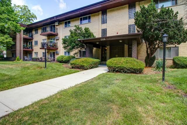 1206 E Fairview Street #202, Arlington Heights, IL 60005 (MLS #10778918) :: Helen Oliveri Real Estate