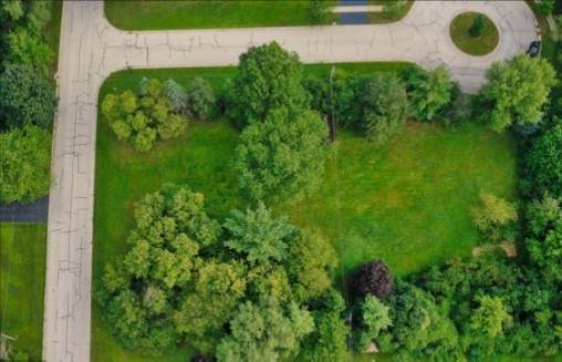1133 N Grove Avenue, Palatine, IL 60067 (MLS #10778925) :: Helen Oliveri Real Estate