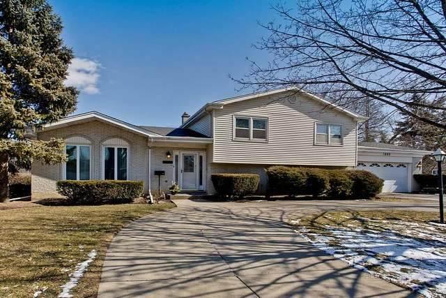1009 S Haddow Avenue, Arlington Heights, IL 60005 (MLS #10779055) :: Helen Oliveri Real Estate