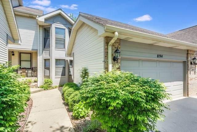 894 N Auburn Woods Drive, Palatine, IL 60067 (MLS #10779144) :: Jacqui Miller Homes